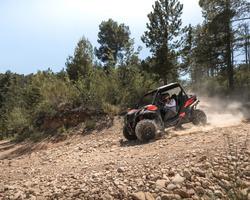 Maverick Trail 800 2021